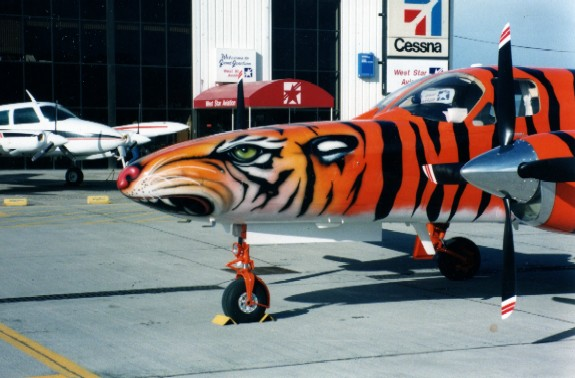 Around the World Tiger