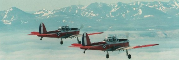 Chipmunks over the Bering Straits